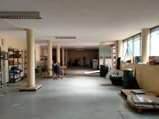 Immobile Affitto Beinasco