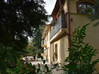 Foto - Cascina, ottimo stato, 17150 mq, Sant'anna, Rocca d'Arazzo