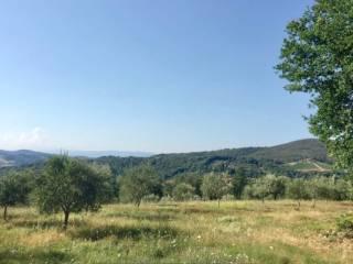 Terreno Vendita San Casciano in Val di Pesa