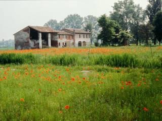 Palazzo / Stabile Vendita Loreggia