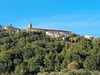 Foto - Trilocale San Vito sul Cesano, San Lorenzo in Campo