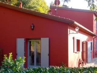 Foto - Open space via Siena, Levane, Montevarchi