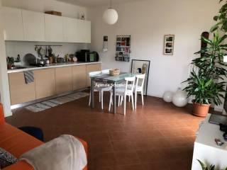 Foto - Appartamento buono stato, secondo piano, Tavullia