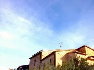 Foto - Loft via delle Capanne 15, Roselle - Nomadelfia, Grosseto