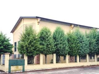 Immobile Vendita Sant'Alessio con Vialone