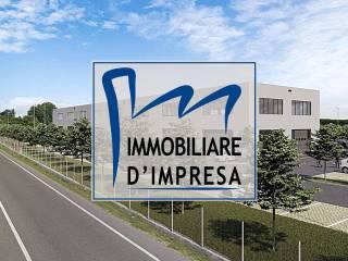 Immobile Vendita Montechiarugolo