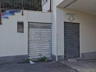 Immobile Affitto Catanzaro