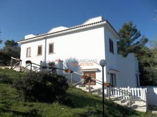 Foto - Appartamento in villa, ottimo stato, 170 mq, Vieste