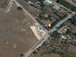 Corato, zona Murgetta